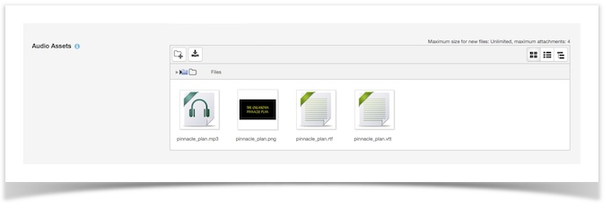 four files shown uploaded from file uploader in settings page