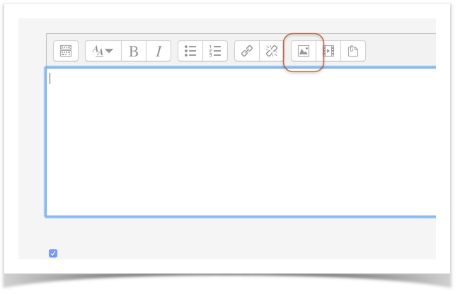 Screenshot of HTML text toolbar with add picture button circled